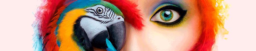 Adobe готовится выпустить полноценный Photoshop для iPad