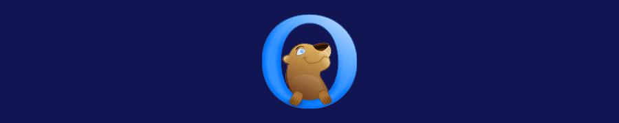 Otter Browser 1.0 — первый выпуск браузера, после 5-ти лет разработки