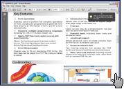 Скриншот Adobe Reader 1