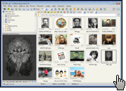 Скриншот FastStone Image Viewer 1